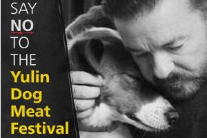 """Meme with man comforting dog and text, """"Say No To The Yulin Dog Meat Festival"""""""