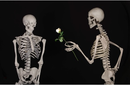 Skeleton handing companion, a rose