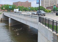 photo of the Flint River (Garland Bridge)