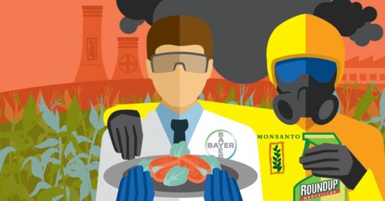 graphic image of a Bayer scientist holding a plate of genetically engineered food, standing next to a Monsanto employee in a HazMat suit with a bottle of Roundup Ready weed killer