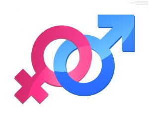 symbol male-and-female-relationship-sign