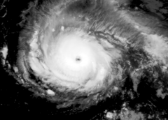 satellite (black and white) image of Hurricane Irma