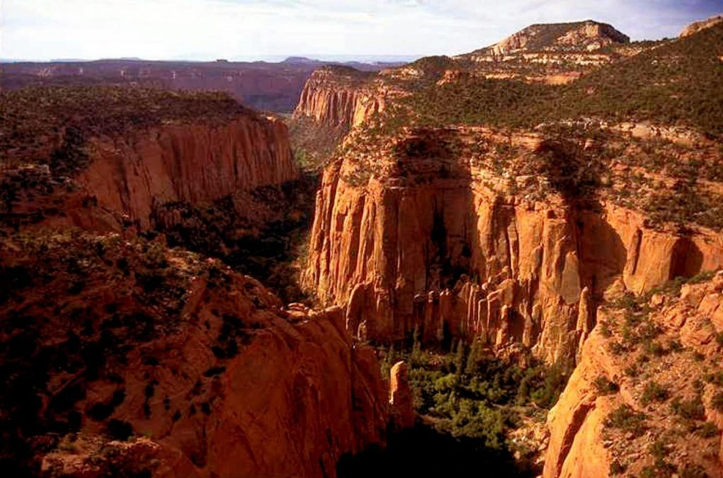 a photo of magnificent canyons that are part of the Bears Ears National Monument