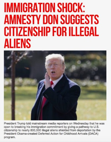 "reproduction of Breitbart headline titled ""Amnesty Don"""