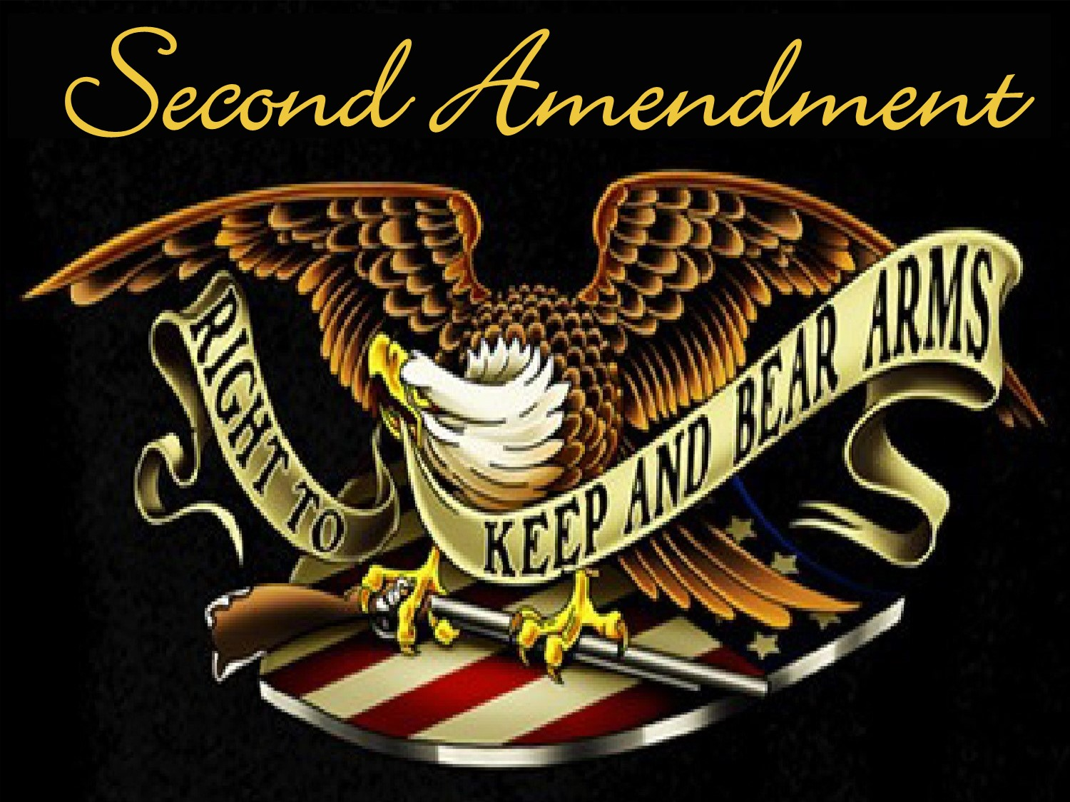 Second Amendment graphic