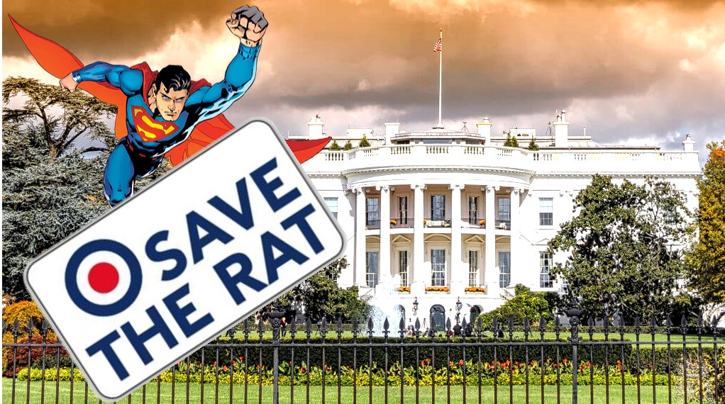 "Save the Rat White House meme featuring Superman with a banner reading ""Save The Rat"""