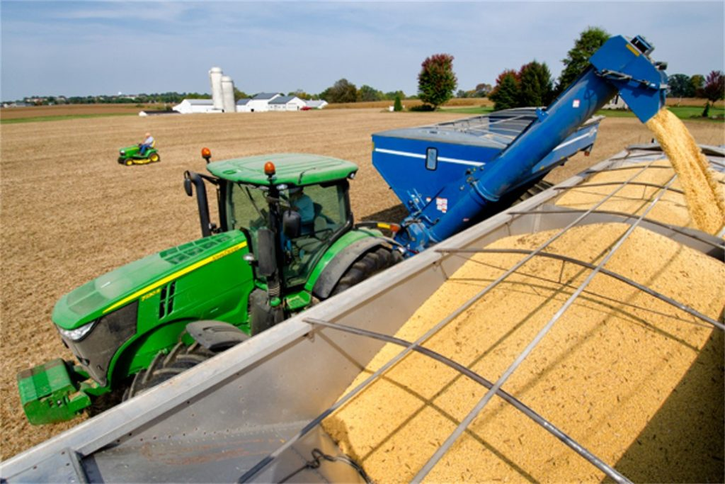 soybean-harvest photo
