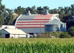 image of American farm in the Heartland with American Flag painted on an equipment building.