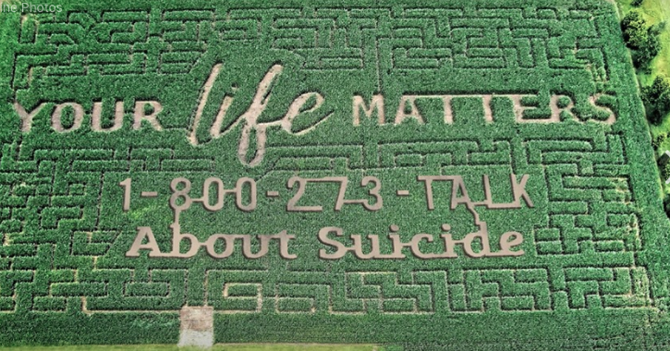 A public service message in the form of a Corn maze. Increased levels desperation and hopelessness, beyond the normal degree of stress, due to dire finances of farmers has led to an uptick in suicides - and an elevated need for awareness and intervention.