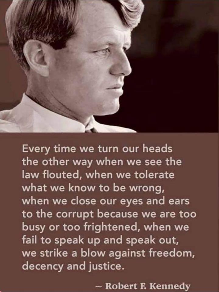 Meme showing photo of Robert F. Kennedy and the text of comments he made about the necessity to speak out against indecency and wrongdoing in order to protect democracy and a civil society.
