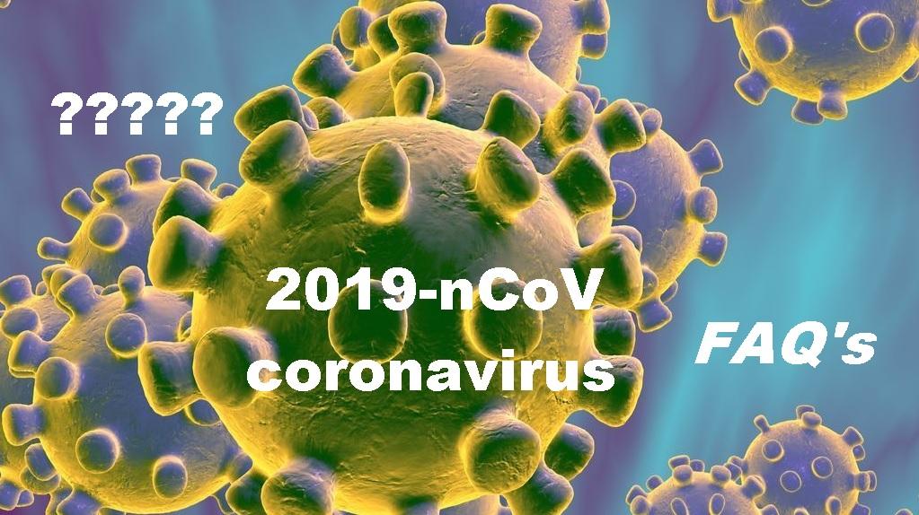 image of novel coronavirus - photo taken under microscope