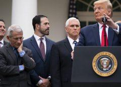 "Trump's ""Bump"" On His COVID-19 Coronavirus Handling Is Now A Bust"