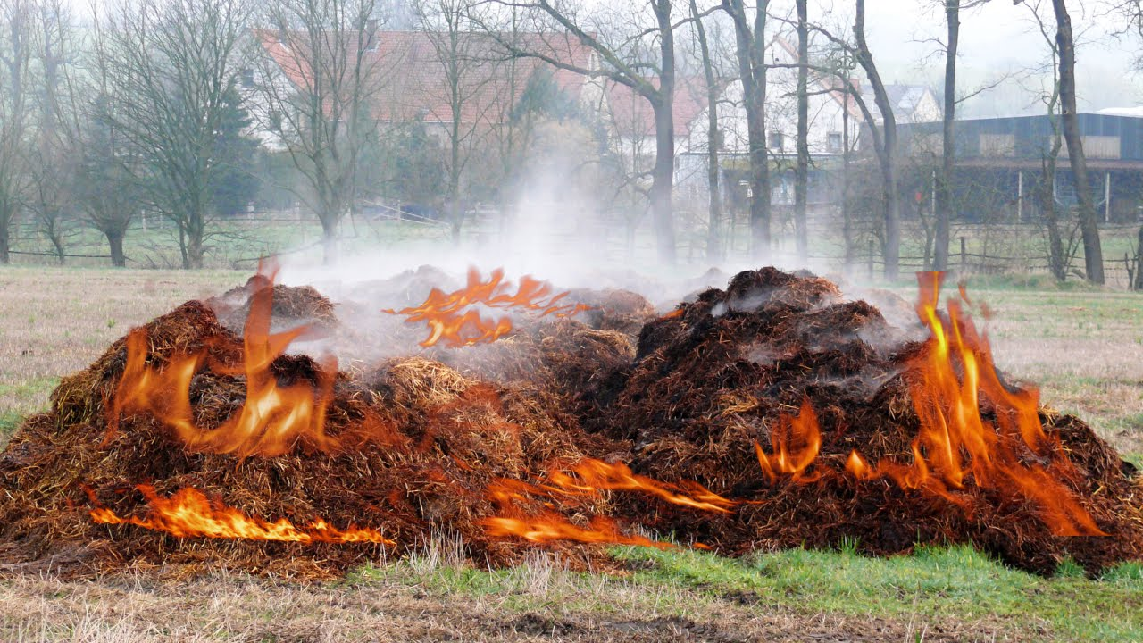 photo of a pile of manure that has spontaneously combusted