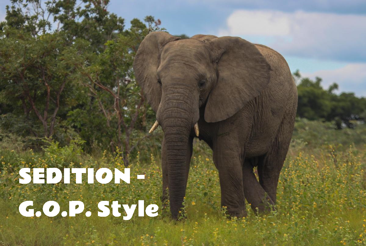 "image of elephant, with the caption, ""SEDITION - GOP Style."""